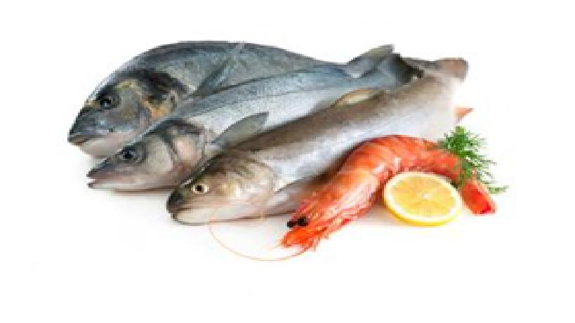 Makanan Hasil Laut