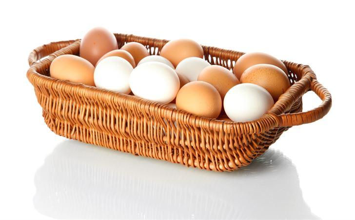 Bolehkah Makan Telur Setiap Hari?