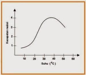 pengaruh-suhu-terhadap-enzim