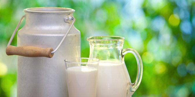 Exclusive: Segalanya Tentang Susu