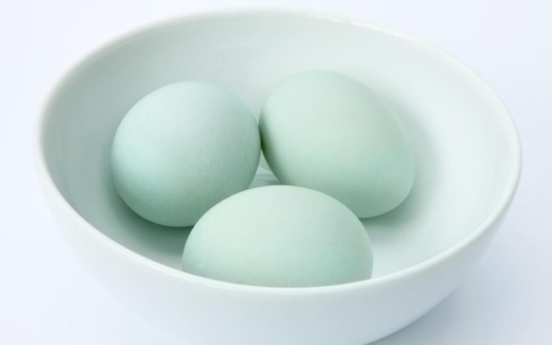 Kandungan Gizi Telur Bebek dan Olahannya