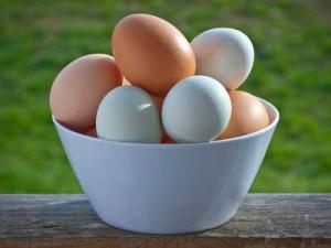 telur bebek vs telur ayam
