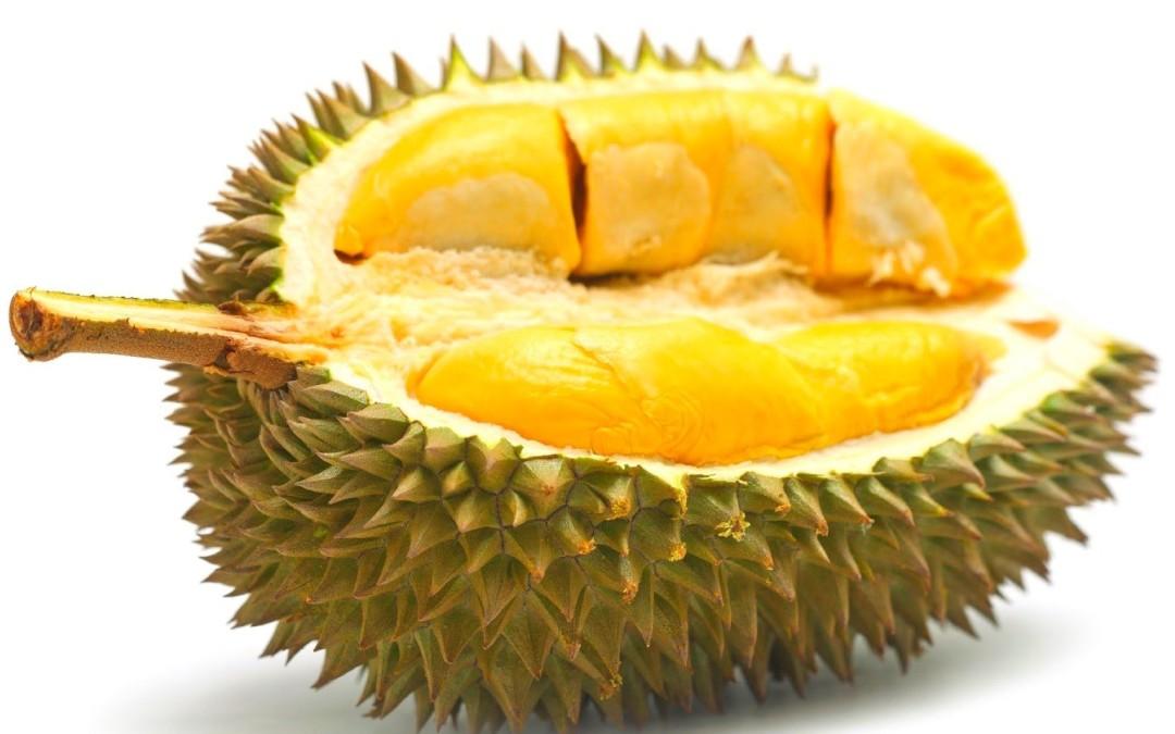 Durian, Si Raja Buah