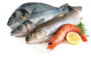 fish-seafood 304xx725-483-0-0