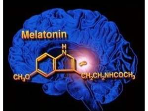 Melatonin-Hormonu-_zps392c47be